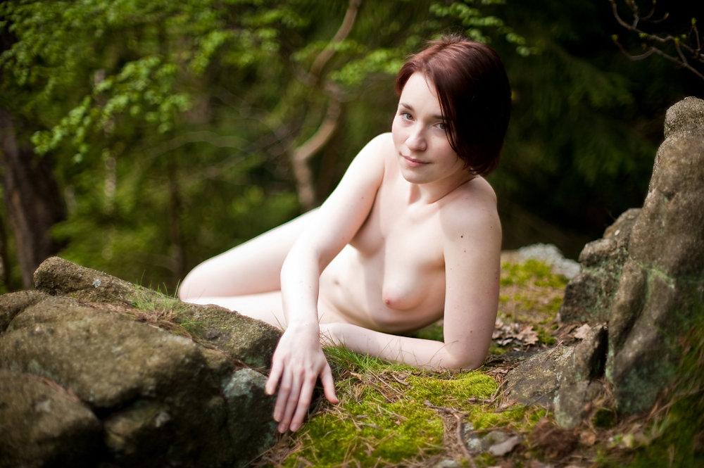 20100615171617-beauty-in-the-forest.jpg
